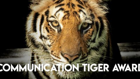 Communication Tiger Award
